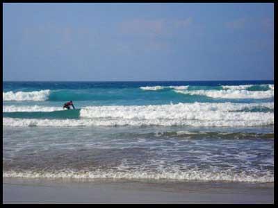 http://www.puravidalanzarote.com/images/surf.jpg